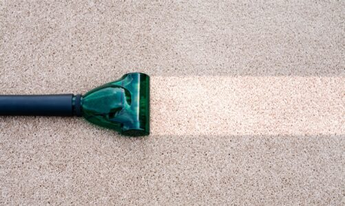 Do you think you can clean up your carpet alone?