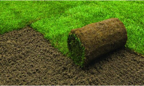 How can we obtain the best soil for the turf?