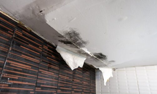 What Damage Can a Leaking Roof Cause?