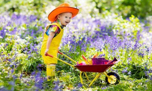 Designing A Garden For Your Children To Enjoy