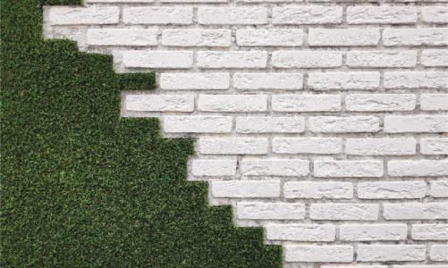 GRASS FENCE: WALL DESIGN IDEAS