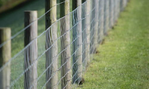 Reasons that Make Wire Mesh Fencing Special