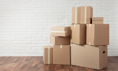 Cardboard Shifting Boxes Vs Rental Plastic Boxes – Which of the Two is Better?
